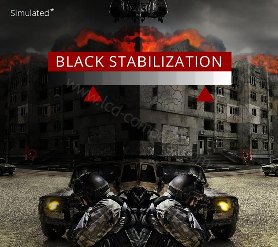 Viewsonic XG350R-C Black Stabilisation