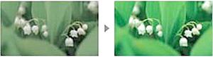 Toshiba 3D Color Management