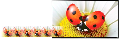 TV LG avec PMI : Picture Mastering Index